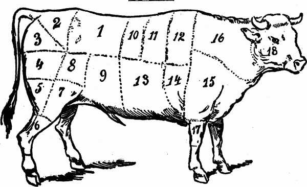The Project Gutenberg Ebook Of The White House Cookbook By Mrs