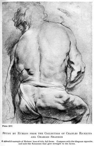Plate XVI. STUDY BY RUBENS FROM THE COLLECTION OF CHARLES RICKETTS AND CHARLES SHANNON A splendid example of Rubens' love of rich, full forms. Compare with the diagram opposite, and note the flatnesses that give strength to the forms.