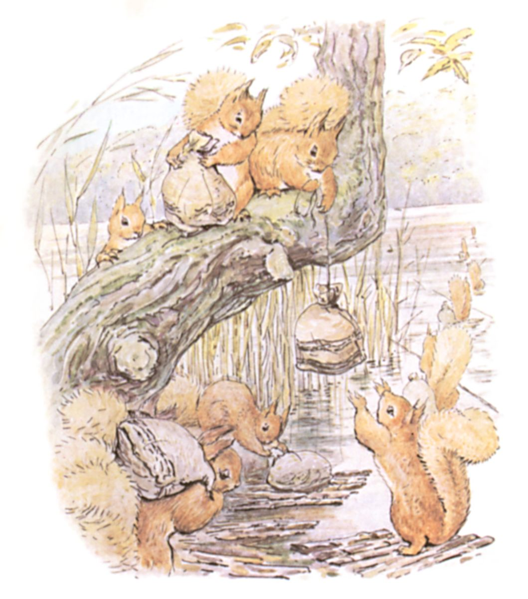 Little red squirrel and his name was nutkin he had a brother called