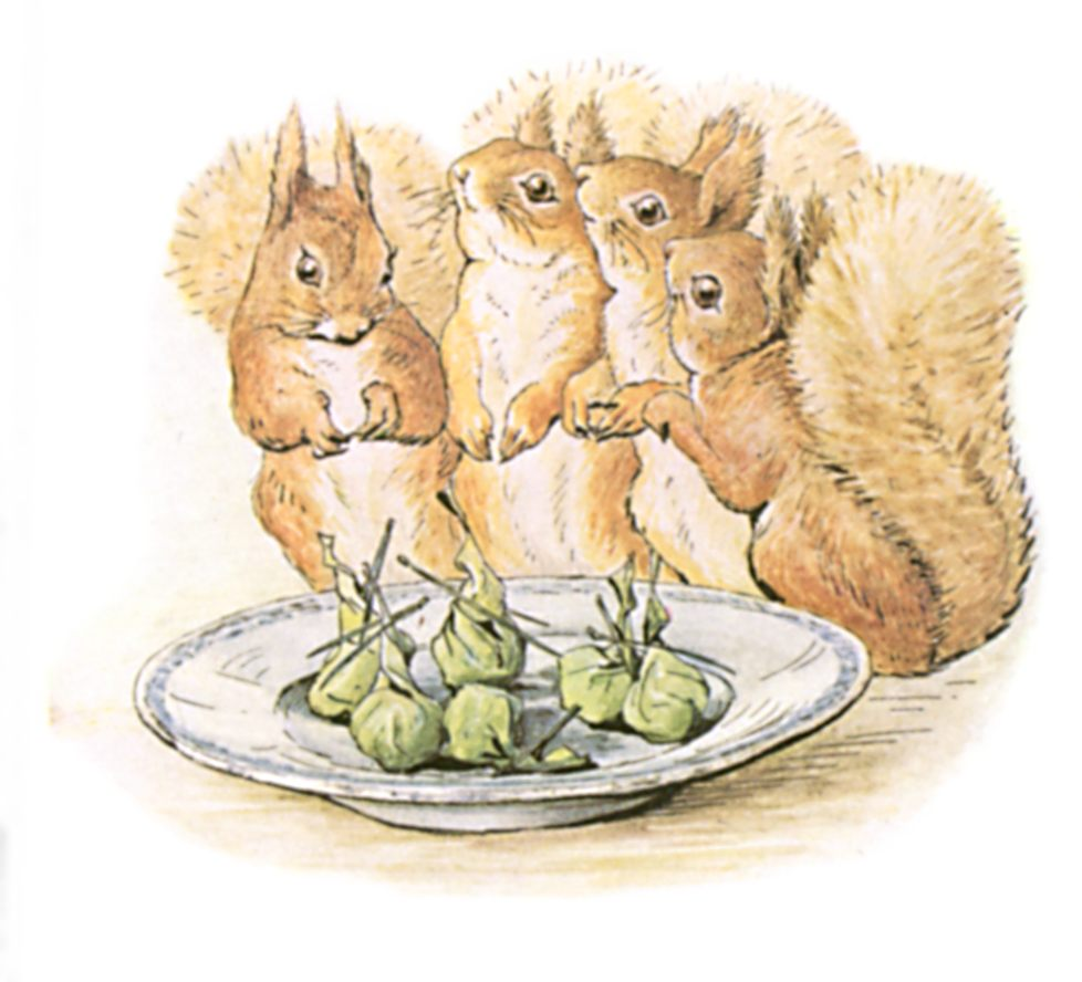 The Tale of Beatrix Potter Squirrel Nutkin