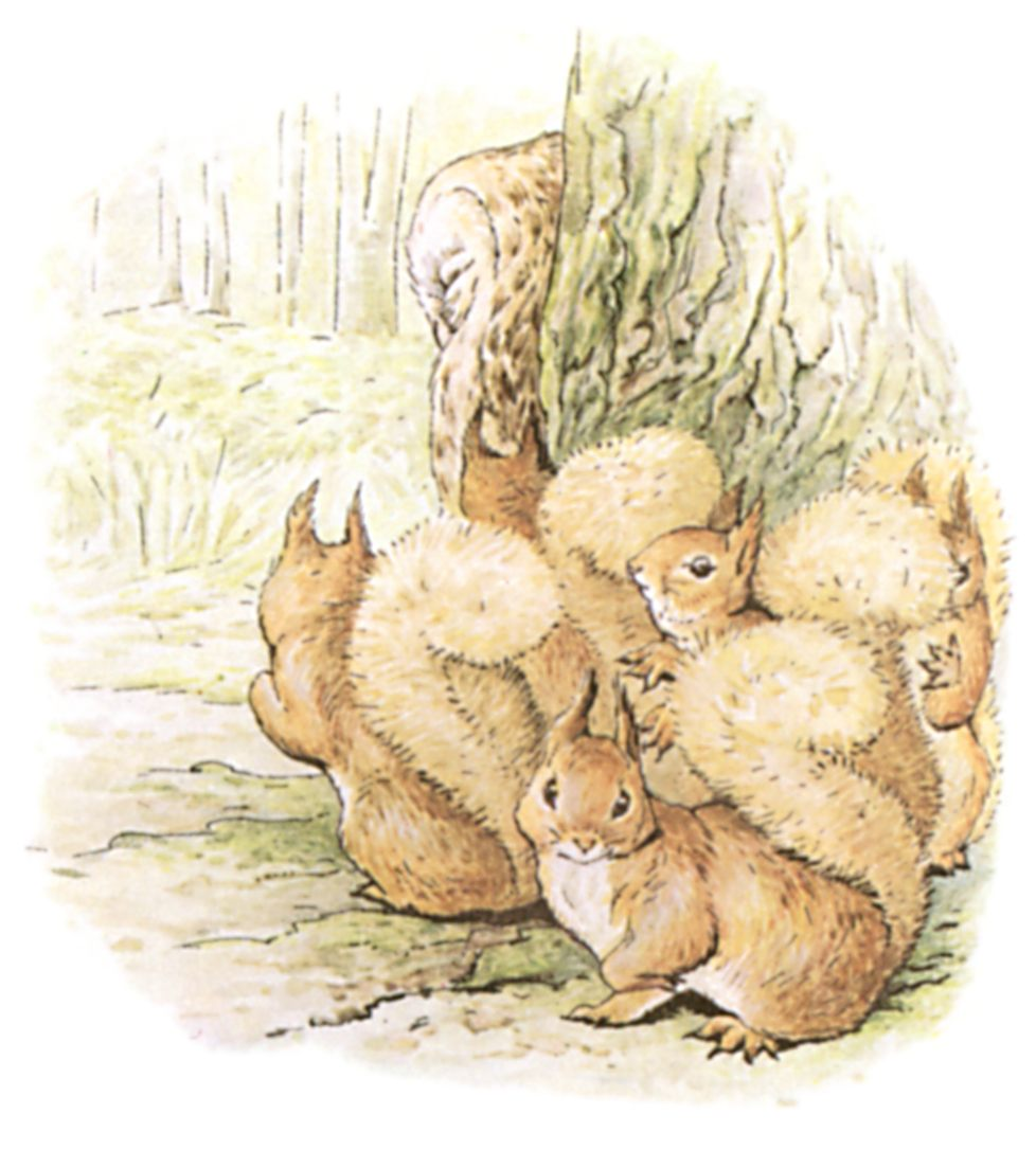 The Project Gutenberg EBook Of Tale Squirrel Nutkin