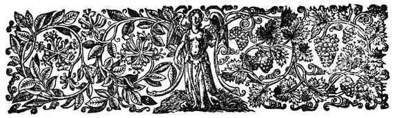 Micrographia eBook: Hooke , Robert : Amazon.co.uk: Kindle ...