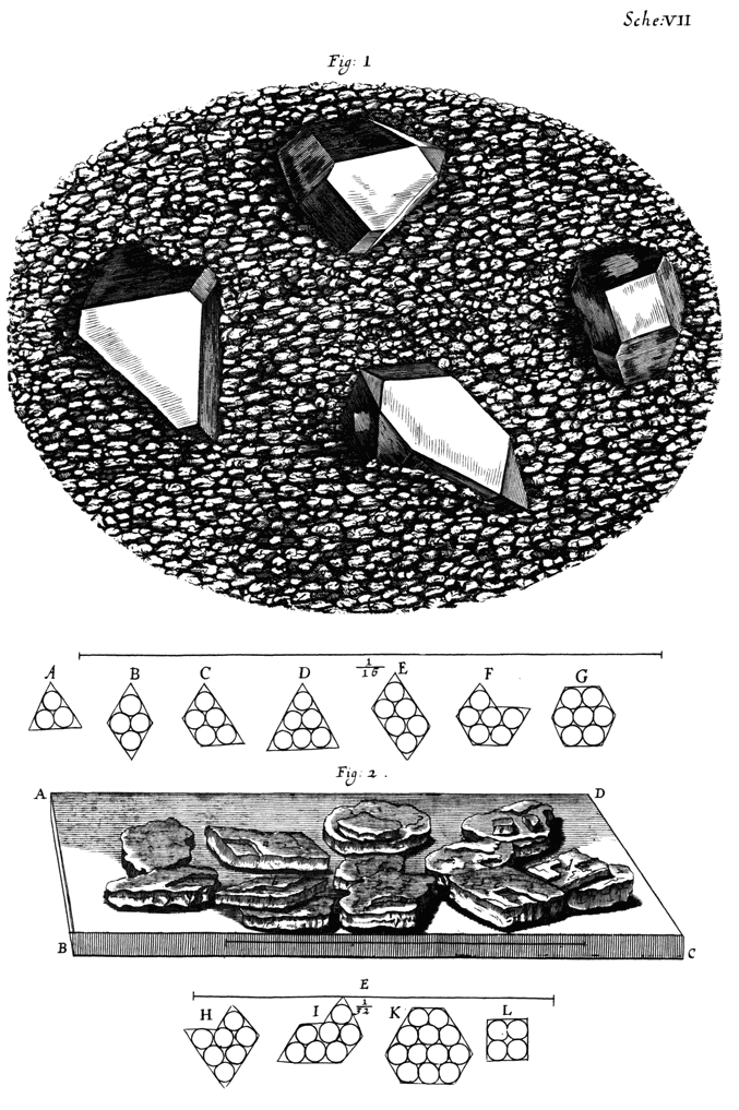 Micrographia - Some Physiological Descriptions of Minute ...