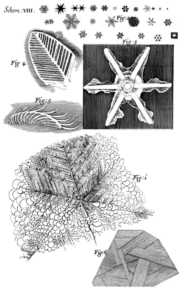 The Project Gutenberg eBook of Micrographia, by Robert Hooke