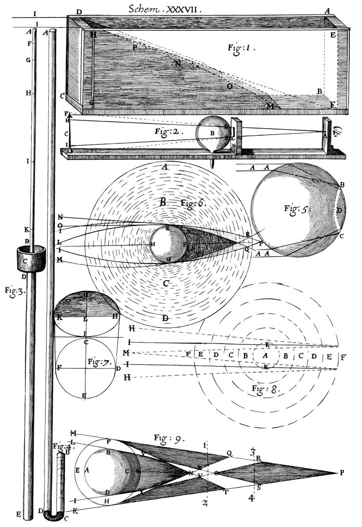 Micrographia (Illustrated) eBook: Hooke, Robert: Amazon.in ...