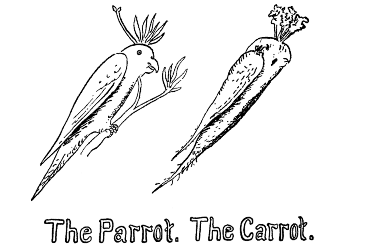 the project gutenberg ebook of how to tell the birds from the