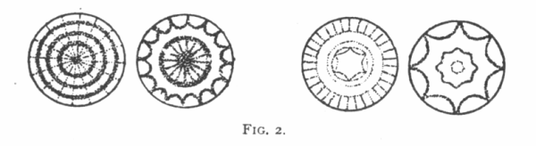 FIG. 2. FORMS PRODUCED IN SOUND
