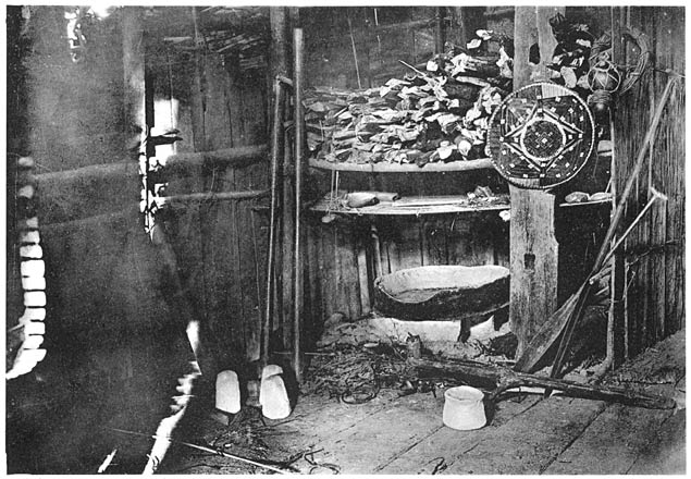 Quer Durch Borneo: Ergebnisse Seiner Reisen In Den Jahren 1894, 1896u201397 Und  1898u20131900: Zweiter Teil