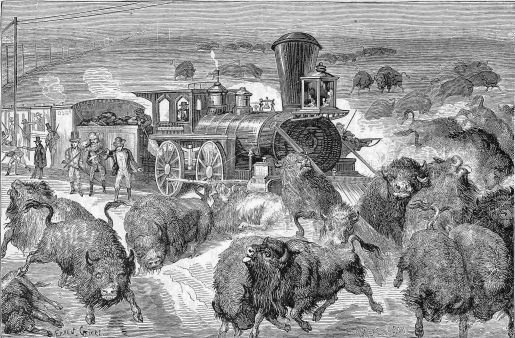 SLAUGHTER OF BUFFALO ON THE KANSAS PACIFIC RAILROAD.
