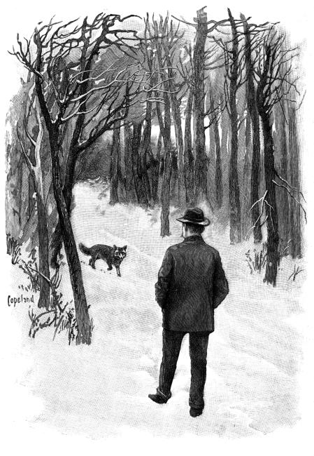 The Project Gutenberg Ebook Of Ways Of Wood Folk By William J Long