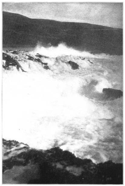 Coast Surf Scene.