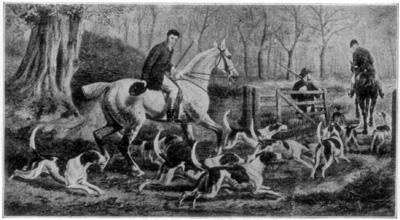 The Beginning of the Fox Hunt