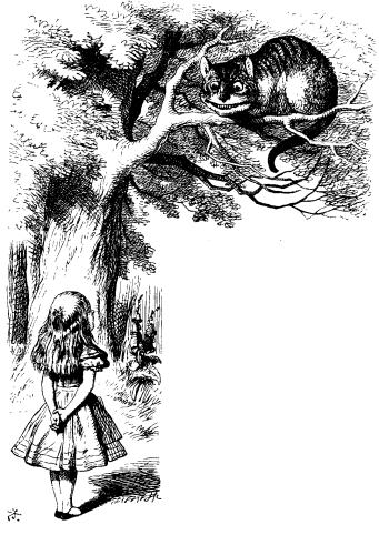 The Project Gutenberg Ebook Of Alice S Abenteur Im Wunderland