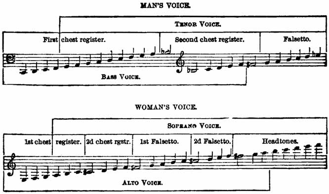The project gutenberg ebook of voice production in singing and fig 50 fandeluxe Choice Image
