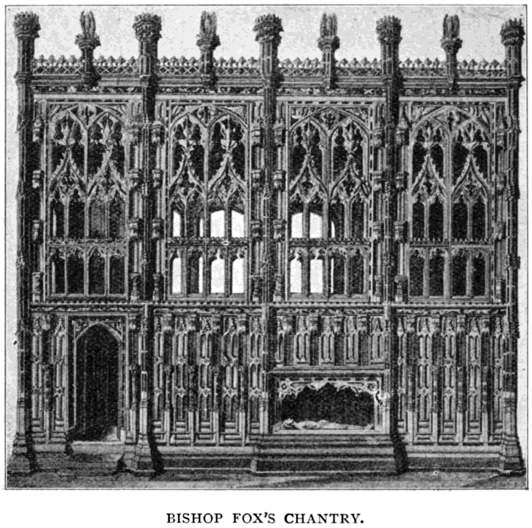 Winchester Cathedral (rose): description, landing, features