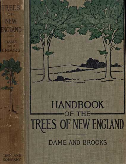 The project gutenberg ebook of hand book of the trees of new england character set encoding iso 8859 1 start of this project gutenberg ebook trees of new england produced by juliet sutherland janet blenkinship fandeluxe Choice Image