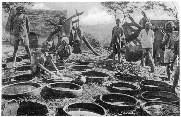 pindari | Indian Treasure
