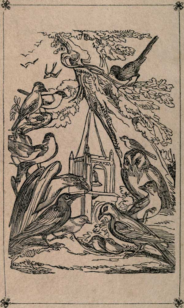 Death and burial of cock robin