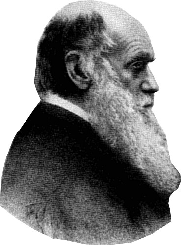 The project gutenberg ebook of darwin and after darwin volume i 2008 ebook 24800 language english character set encoding iso 8859 1 start of this project gutenberg ebook darwin produced by marilynda fandeluxe Gallery