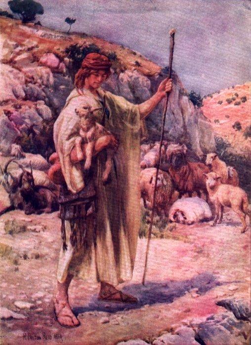 The Project Gutenberg Ebook Of David The Shepherd Boy By Amy Steedman