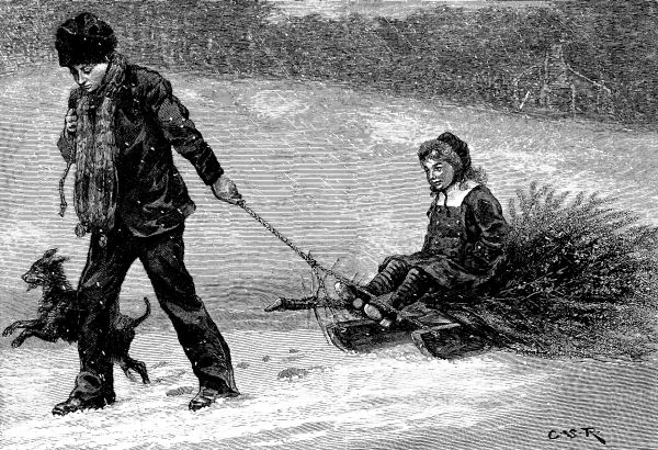 The project gutenberg ebook of harpers young people dec 30 1879 what became of the christmas tree fandeluxe Choice Image