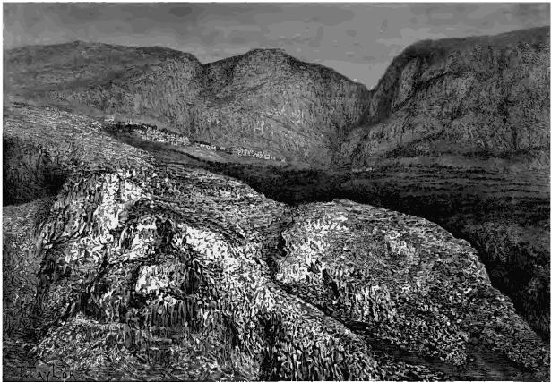 Tissu au mètre coton Suède Elche Nature Noir Scandinave NEUF
