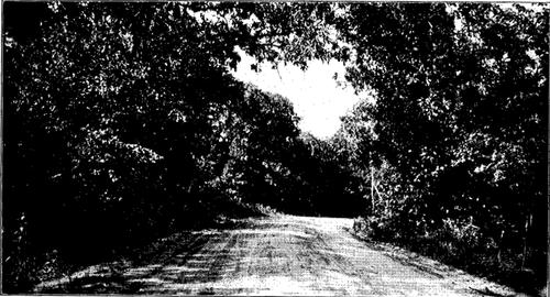 North American Highways
