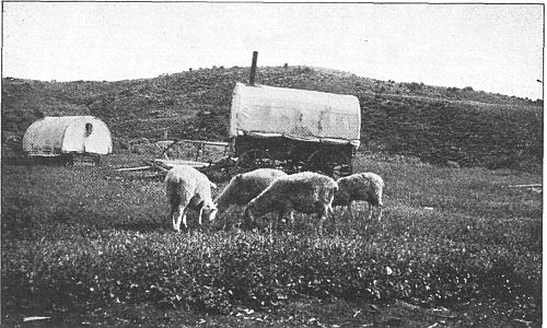 The Project Gutenberg Ebook Of Ox Team Days On The Oregon Trail By