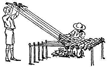 Free preparedness e books root simple camp loom for making mats and mattresses from the 1911 edition of the boy scout handbook fandeluxe Images