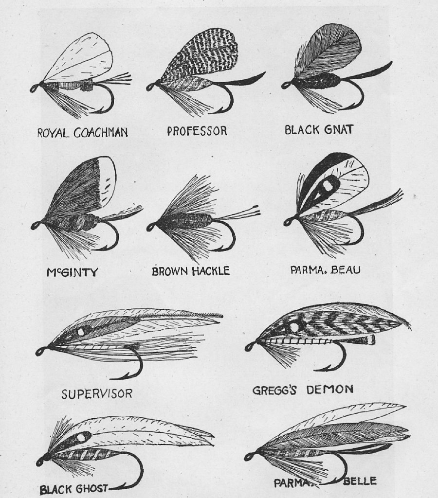 the project gutenberg ebook of how to tie flies by e. c. gregg, Fly Fishing Bait