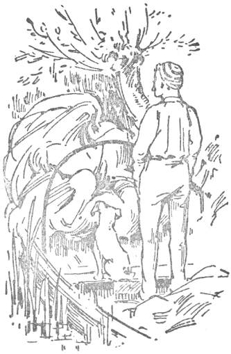 character sketch of jerome harris george in the book three men in a boat From three men in a boat what are the characteristics of george , harris , jim george _____the character of george is based on the author's real.