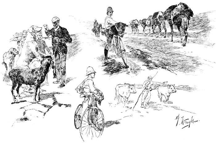 1, THE ENGLISH CONSUL AT ANGORA FEEDING HIS PETS; 2, PASSING A CARAVAN OF CAMELS; 3, PLOWING IN ASIA MINOR.