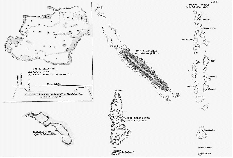 Die Verbreitung Der Verschiedenen Arten Der Corallen Riffe Mit Der Lage Der  Activen Vulcane