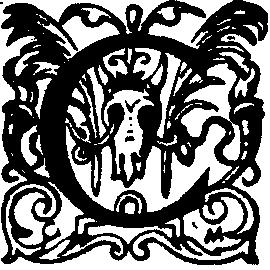 Légende de l/'ours brun tissé Art Tapestry Throw 4832-T made in USA