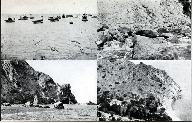 The project gutenberg ebook of across the continent by the lincoln seals on rocks at catalina island fandeluxe Images