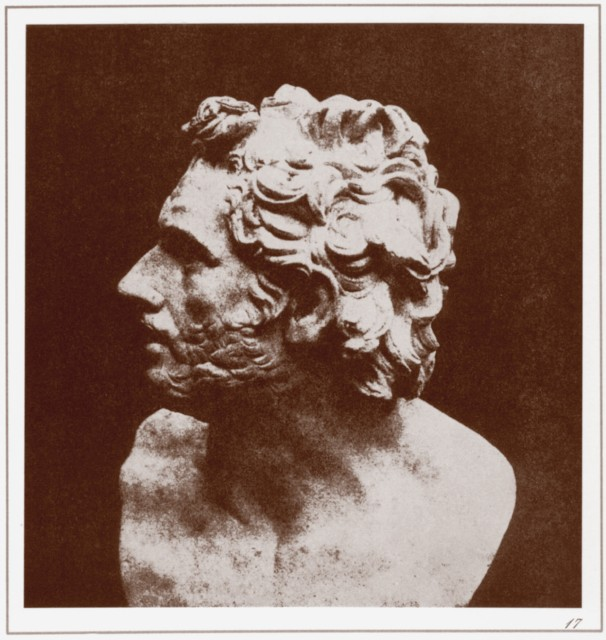PLATE XVII. BUST OF PATROCLUS.