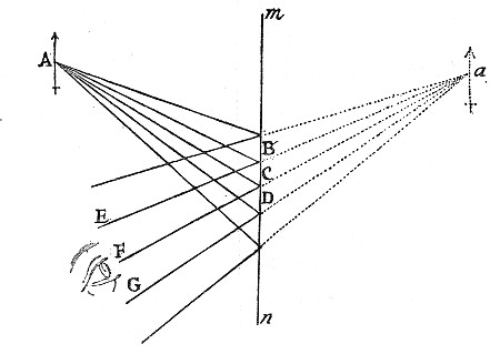 Fig. 9.