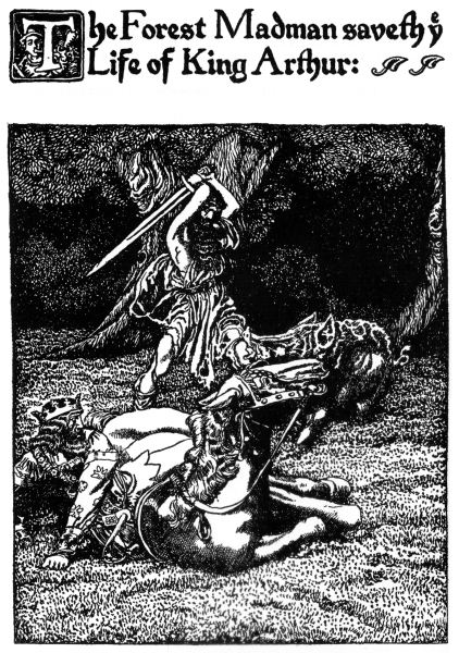 The project gutenberg ebook of sir launcelot and his companions by the project gutenberg ebook of sir launcelot and his companions by howard pyle fandeluxe Images