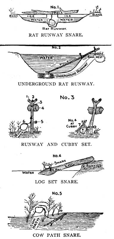 RAT RUNWAY SNARE. UNDERGROUND RAT RUNWAY. RUNWAY AND CUBBY SET. LOG SET SNARE. COW PATH SNARE.