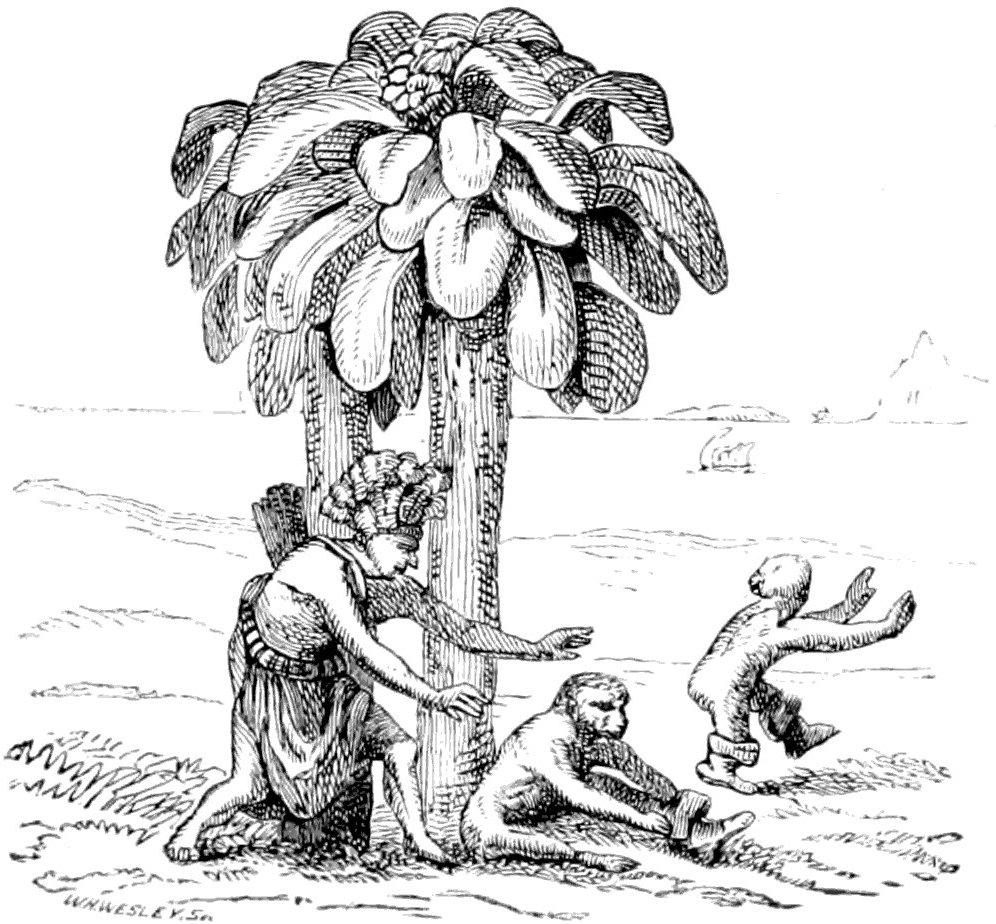 The Project Gutenberg eBook of Zeugnisse für die Stellung des ...