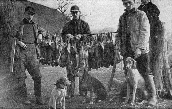 Bird dog hunting dog gun dog macbook skin vinyl decal