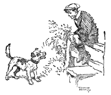the project gutenberg ebook of just william by richmal crompton Muffins Halo william sitting on the stile with the dog in front of him