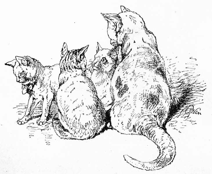the project gutenberg ebook of our cats by harrison weir Funny Cats and Mice the tortoiseshell and white cat