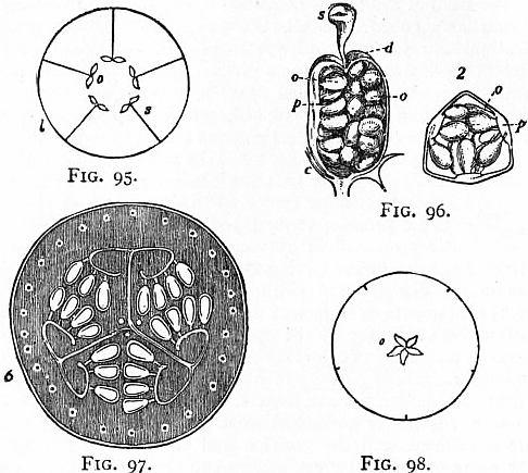 55975fa61a5 The Project Gutenberg eBook of Encyclopædia Britannica