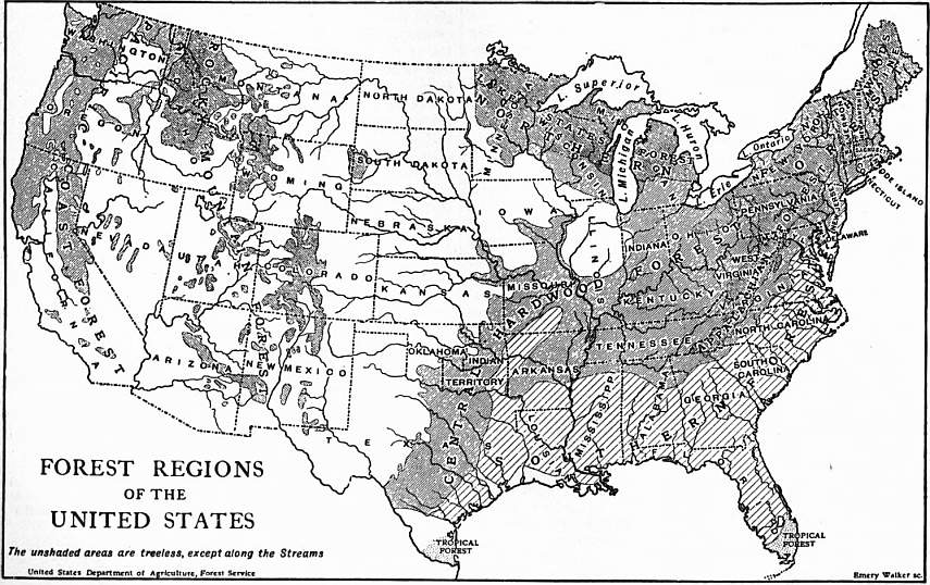 2e9ee0135569d The forest policy of the United States may be said to have had its origin in  1799 in the enactment of a law which authorized the purchase of timber ...