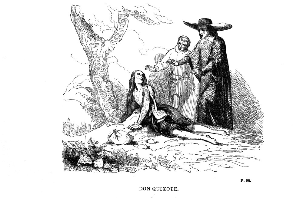 purpose of don quixote