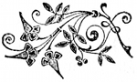 (decorative footer)