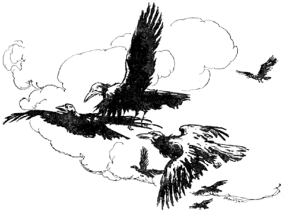 The Ravens flying in a loose group