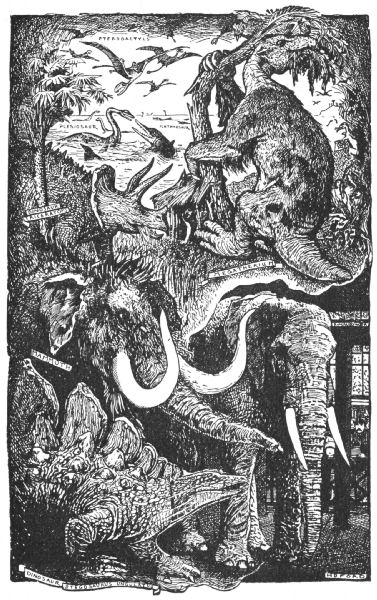 The Project Gutenberg EBook Of Animal Story Book Edited By Andrew Lang