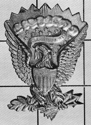 The Project Gutenberg e-Book of American Military Insignia